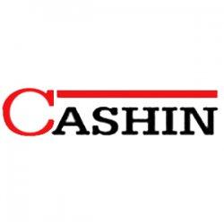 Дизайнерские чугунные печи для дома Cashin (Кашин) Франция.