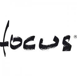 Focus (Фокус) Франция