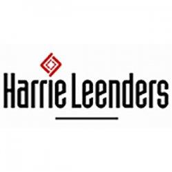 Дровяные отопители в стиле хай-тек Harrie Leenders (Харри Линдерс) Голландия.