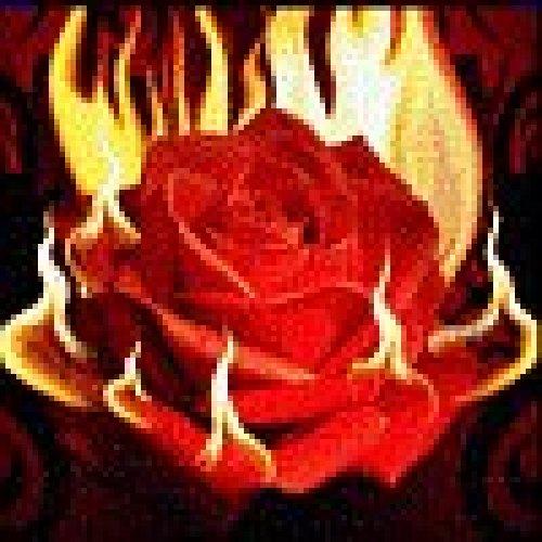 Романтика домашнего огня