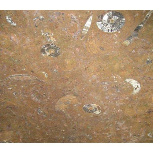 Облицовочный натуральный камень Фоссил Браун