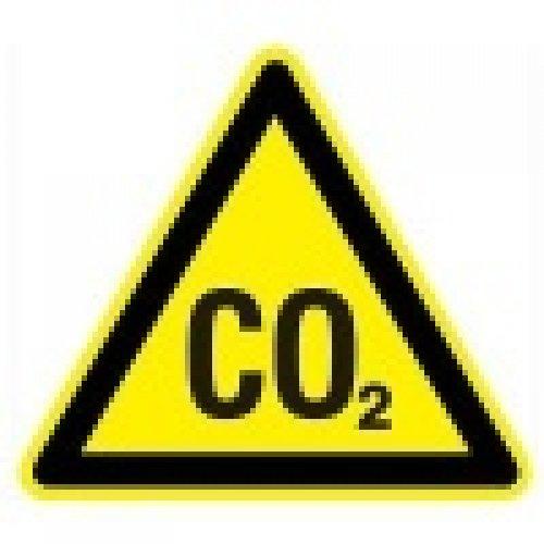 Угарный газ. Главная опасность при эксплуатации каминного оборудования